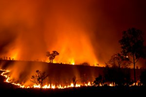 As Natural Disasters Become More Frequent, Climate Change Mitigation Is Critical
