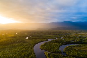 A Green New Deal for Amazonia?