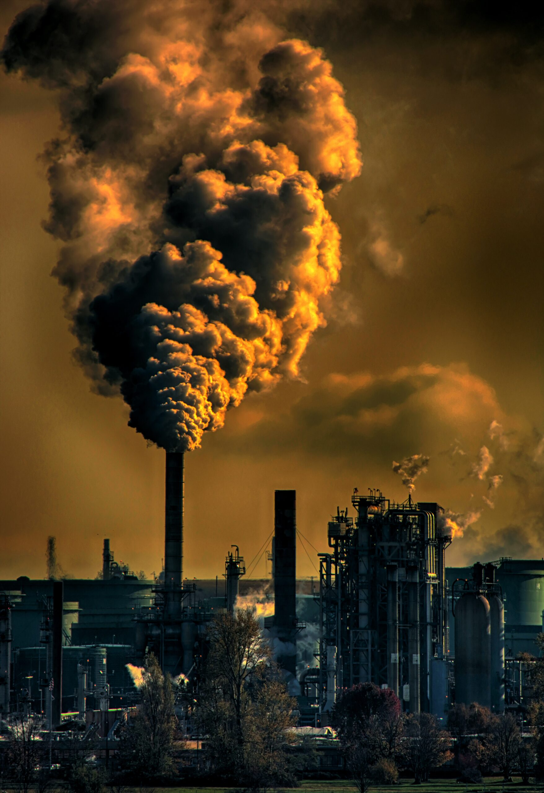 Germany: Air pollution reduces electoral support for government parties